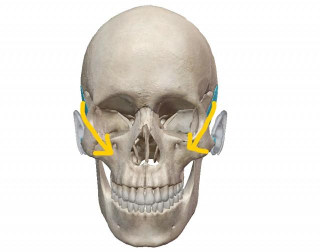 側頭骨が歪みます。
